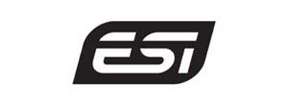 Εικονίδιο κατασκευαστή ESI
