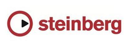 Εικονίδιο κατασκευαστή STEINBERG